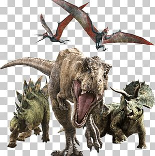 Jurassic World Alive YouTube Dinosaur Universal S Jurassic Park PNG