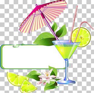 Orange Juice Cocktail Drink PNG