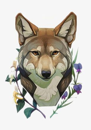 Cartoon Painted Wolf PNG