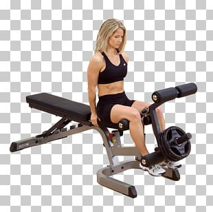 Human Leg Gluteal Muscles Bench Strength Training PNG