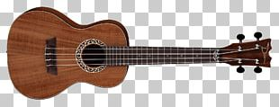 Ukulele Bass Guitar Musical Instruments ESP Guitars PNG