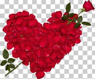 Blue Rose Love Flower Desktop PNG
