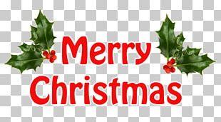 Christmas Eve Christmas Tree Christmas Card PNG