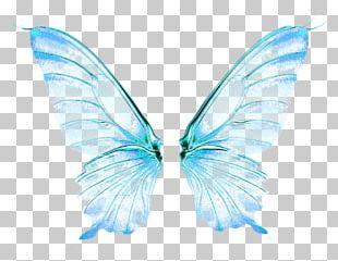 Butterfly Wing Desktop PNG