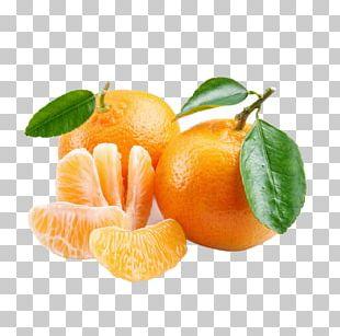 Mandarin Orange Tangerine Tangelo Fruit PNG