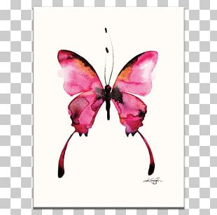 Butterfly Watercolor Painting Art Drawing PNG