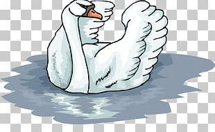 Penguin Mute Swan PNG
