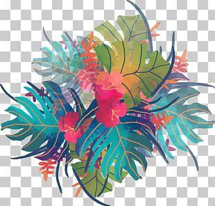 Watercolor Painting Tropics PNG