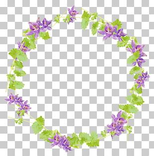 Wreath Floral Design Flower PNG