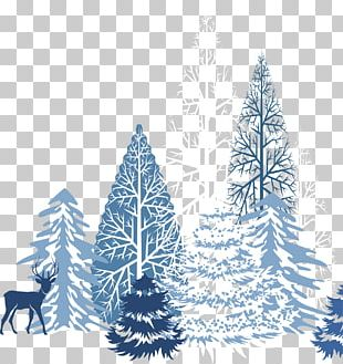Winter Snowflake PNG