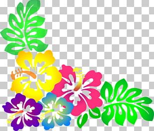 Hawaiian Borders And Frames Flower PNG