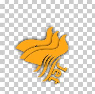 Beak Eagle H&M Chicken As Food PNG
