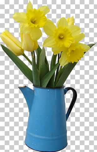 Cut Flowers Daffodil PNG