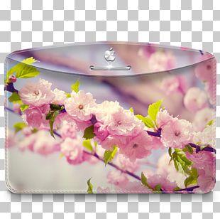 Flower Arranging Blossom Petal Floral Design PNG