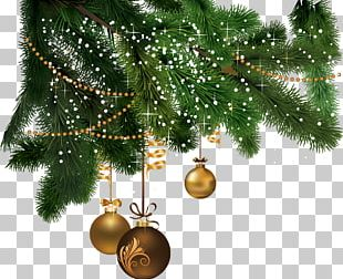 Potins De Femmes Christmas Festival Greeting & Note Cards Party PNG