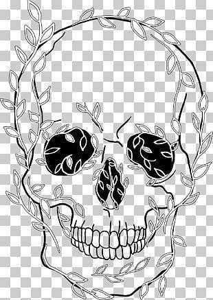 Human Skull Symbolism Drawing Human Skeleton PNG