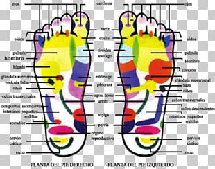 Mental Health Human Behavior Foot Sole PNG