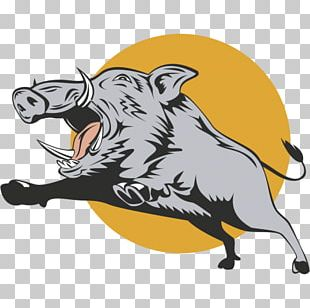 Domestic Pig Stock Photography Feral Pig PNG