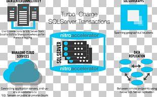 Microsoft SQL Server Database Connection Computer Servers PNG