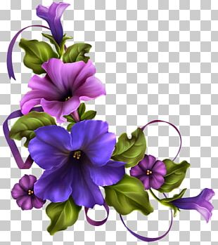 Floral Design Flower Morning Glory PNG