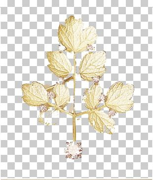 Gold Leaf Jewellery PNG