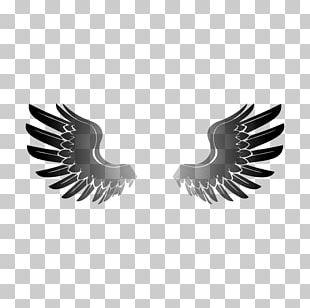 Wings Desktop Wallpaper Beak PNG