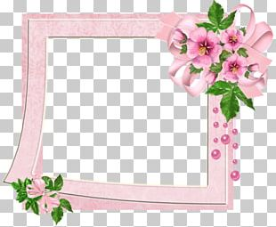 Flowers Gallery Frames Floral Design Cut Flowers PNG