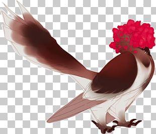 Beak Shoe Chicken As Food Human Leg PNG