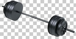 Barbell Physical Fitness PNG