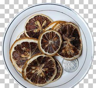 Romeritos Lemon Computer File PNG