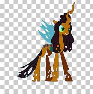 Pony Princess Cadance Twilight Sparkle Pinkie Pie Rarity PNG