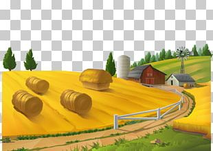 Farm Rural Area Landscape Stock Photography PNG