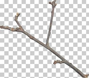 Twig Icon PNG