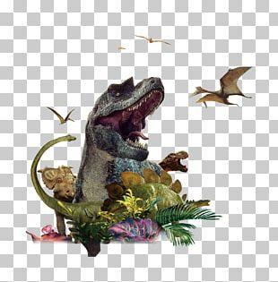 Tyrannosaurus China Dinosaurs Park PNG