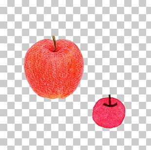 Apple Red Color Computer File PNG