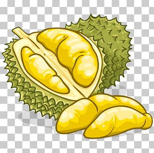 Durian Food Flavor Fruit PNG
