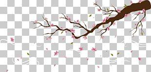 Cherry Blossom Peach Petal PNG