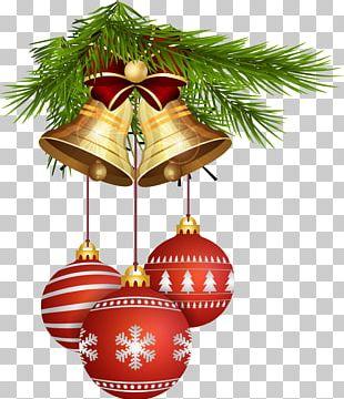 Christmas Tree New Year Christmas Ornament PNG