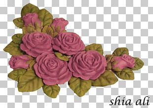 Garden Roses Cabbage Rose Cut Flowers Flower Bouquet PNG
