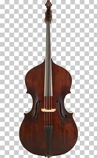 Double Bass Bass Guitar Violin String Instruments Cello PNG