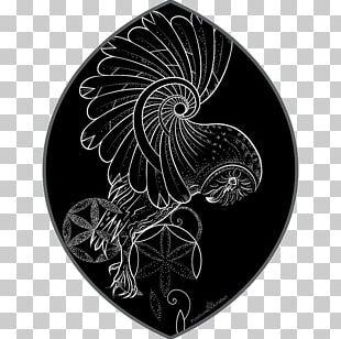 Sacred Geometry Flash Mandala Circle PNG