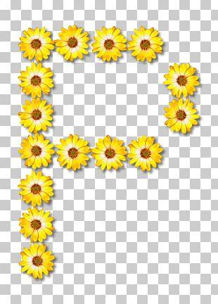 Common Sunflower Floral Design Letter Alphabet PNG