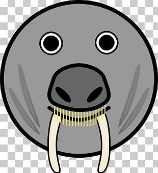 Funny Animal Cartoon Face PNG