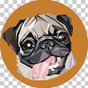 Pug Dachshund Coffee Puppy Cafe PNG