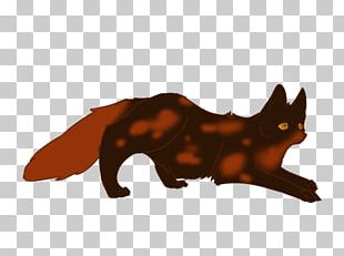 Whiskers Red Fox Cat Snout PNG