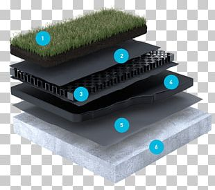Roof Shingle Green Roof Roof Garden Domestic Roof Construction PNG