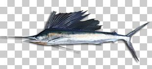 Swordfish Sailfish Fishing Oily Fish PNG