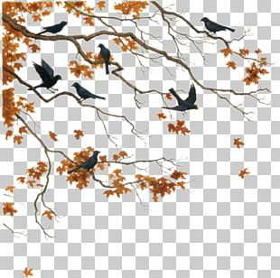 Twig Tree Painting PNG