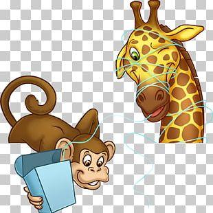 Giraffe Cat Illustration Mammal PNG
