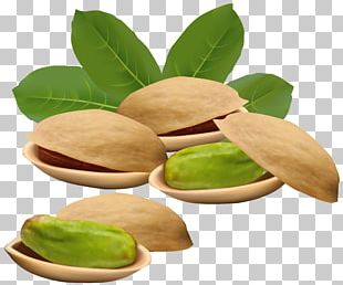 Pistachio Stock Illustration Nucule PNG